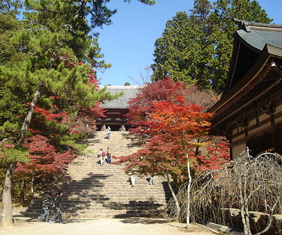 Kyoto's Takao attractions and access