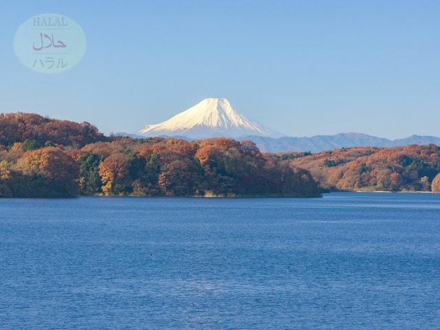 Fujisan - How To Support And Expand The Halal Market In Japan