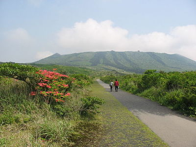 Izu Oshima Island attractions and access