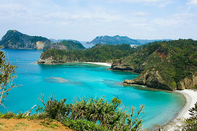 Ogasawara Islands attractions and access