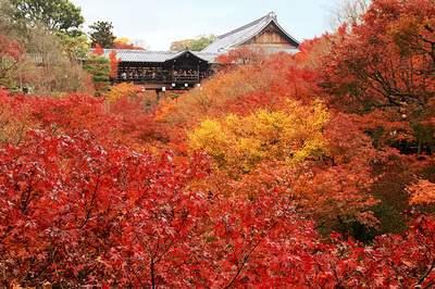 Tofukuji Temple attractions and access